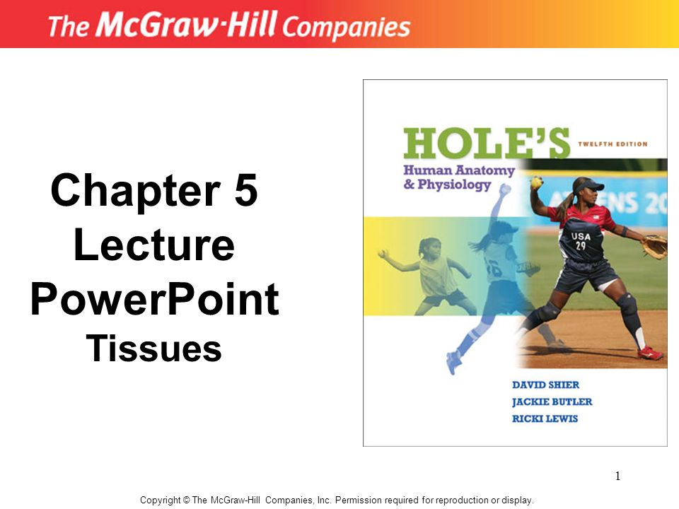 Chapter 5 Lecture PowerPoint - ppt video online download