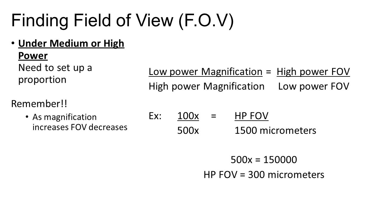 describe the relationship between magnification and field of view