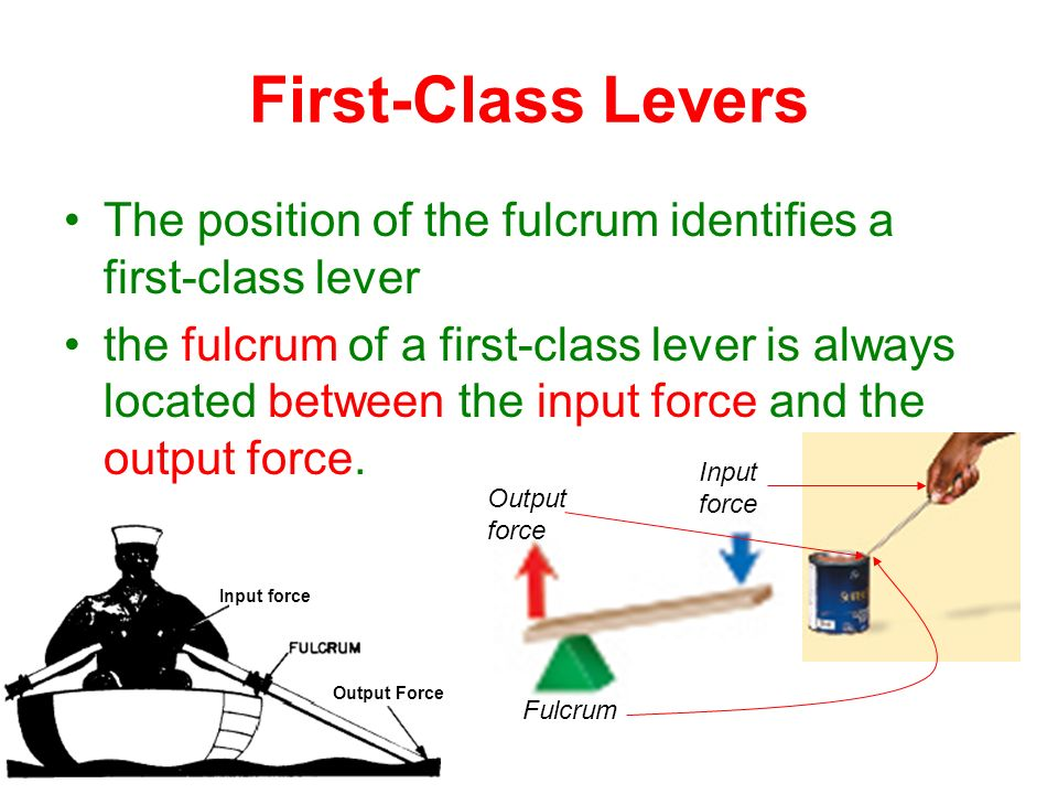Lever Input And Output Force : Section simple machines ppt video online download
