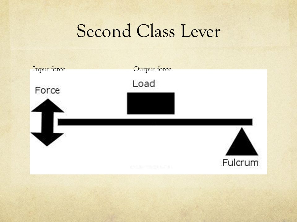 Lever Input And Output Force : Simple machines the lever ppt video online download