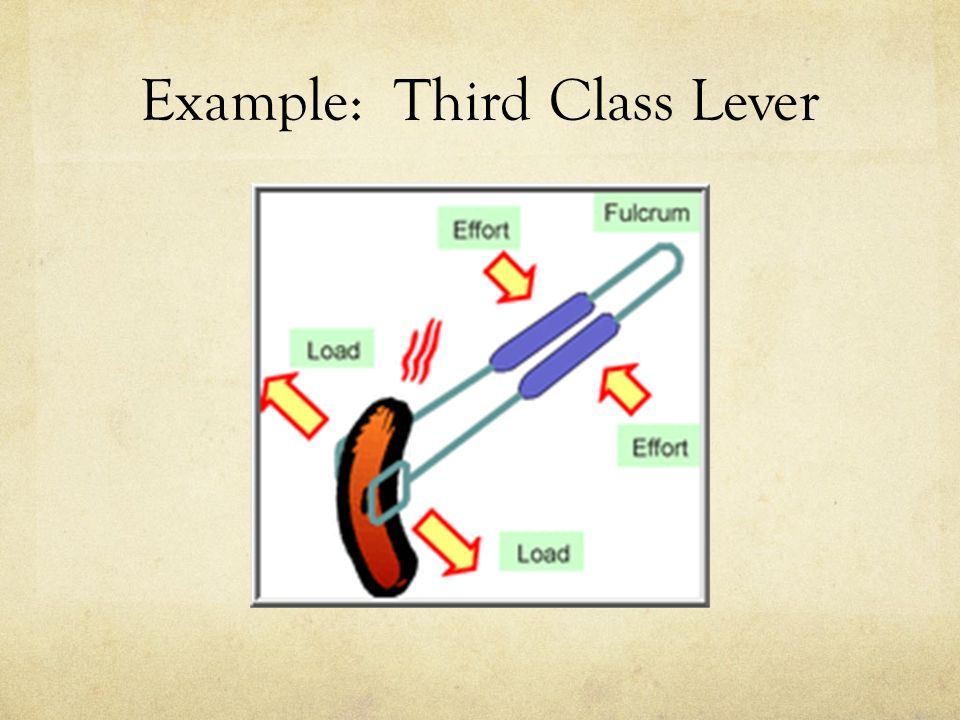 Simple Machines The Lever - ppt video online download