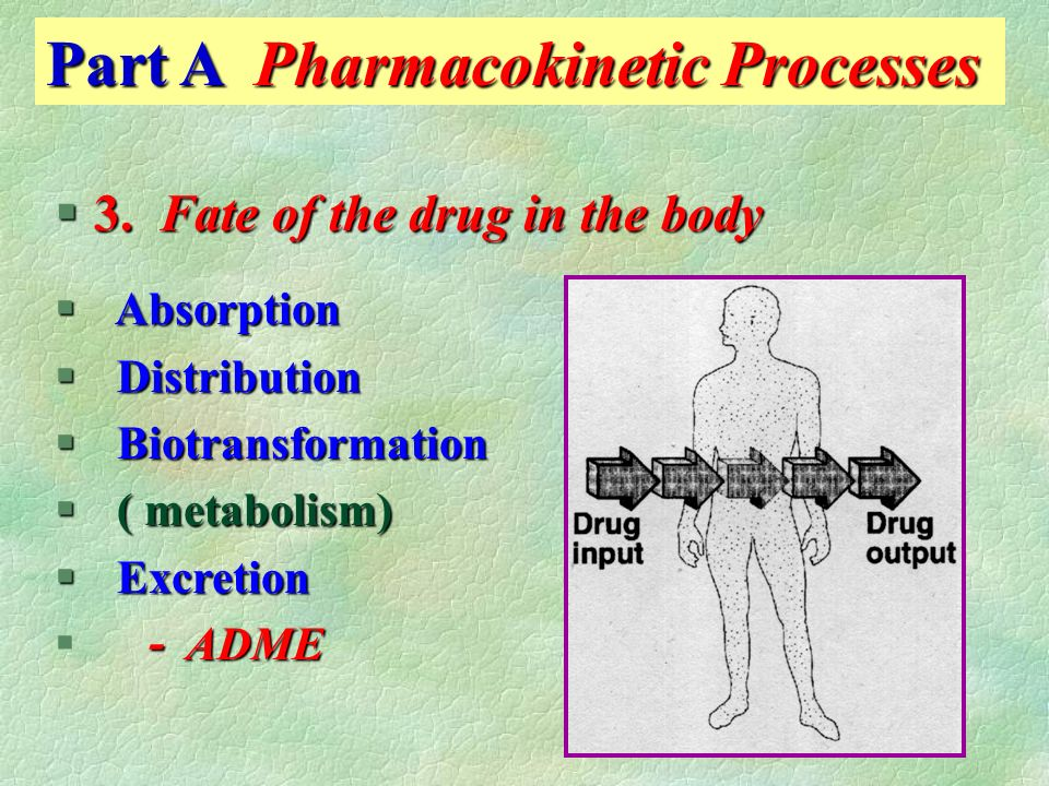 Pharmacology Chapter 2