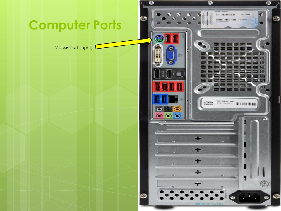 Computer+Ports+Mouse+Port+%28Input%29 computer ports diagram wiring diagrams lose