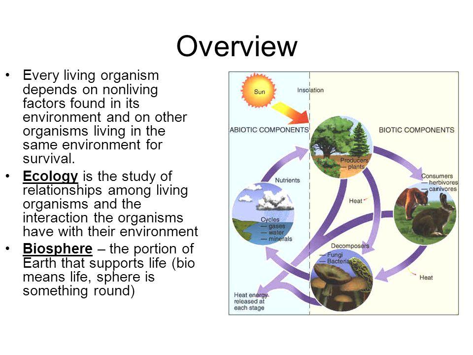 protective relationship among living organism