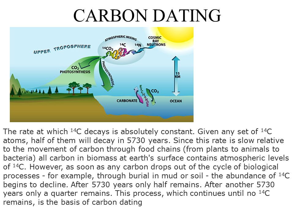 Carbon dating method in biology