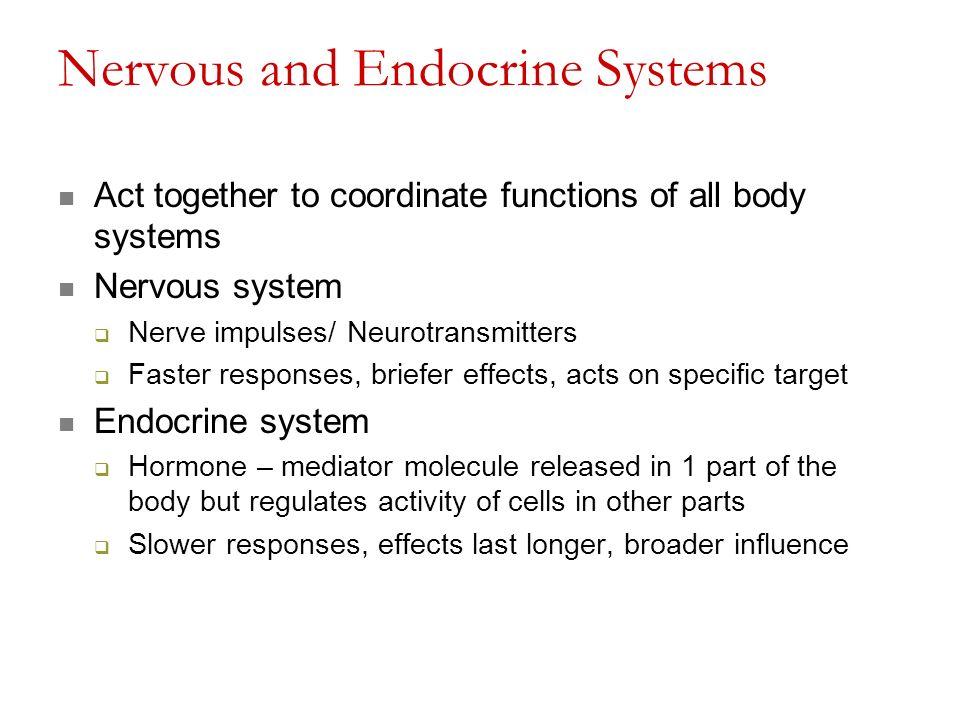 Gemütlich Bilder Des Endokrinen Systems Fotos - Menschliche Anatomie ...