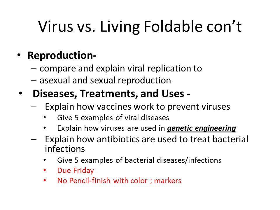 are viruses living essay example Identify the differences between bacteria viruses identify the differences between bacteria viruses we will write a custom essay sample on.