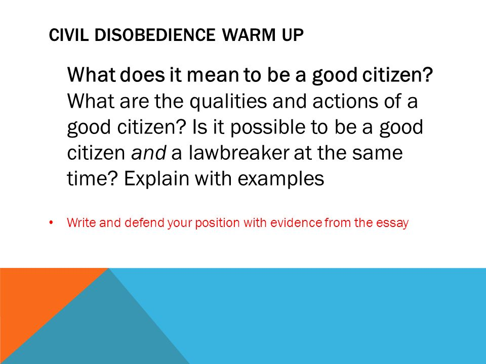 Disobedience Essay