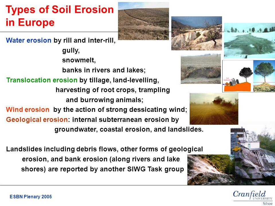 types of soil