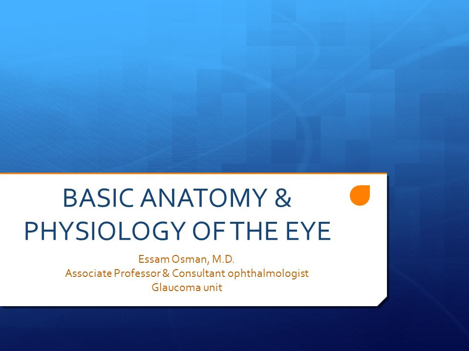BASIC ANATOMY & PHYSIOLOGY OF THE EYE - ppt video online download