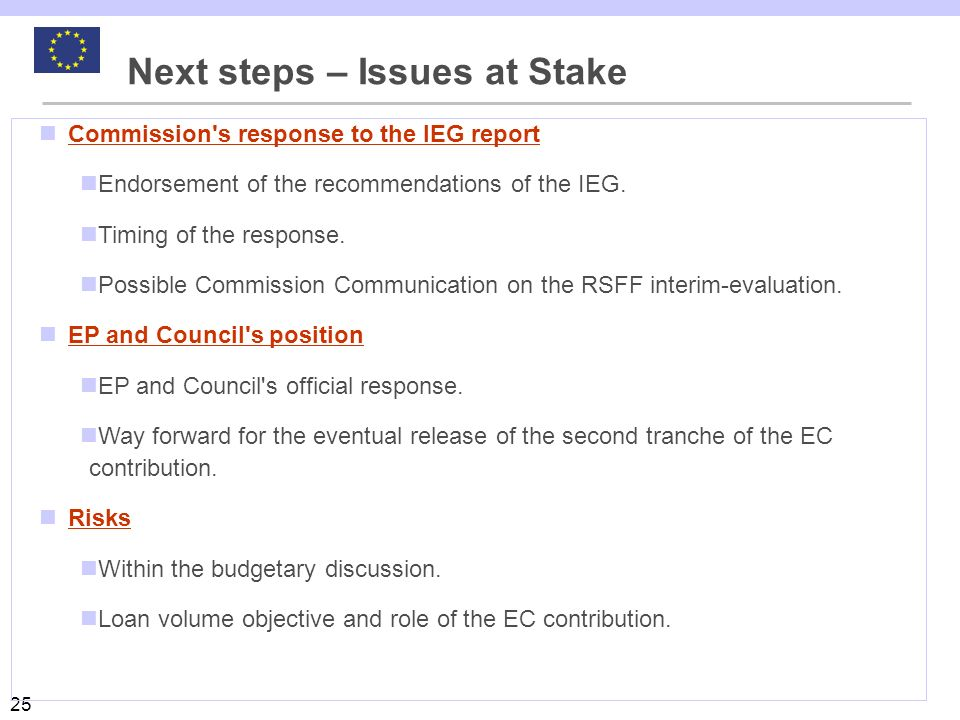 Next steps – Issues at Stake