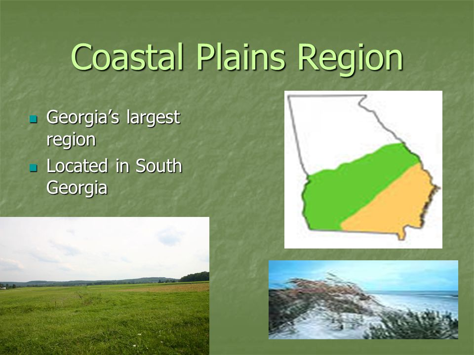 the coastal plains of georgia