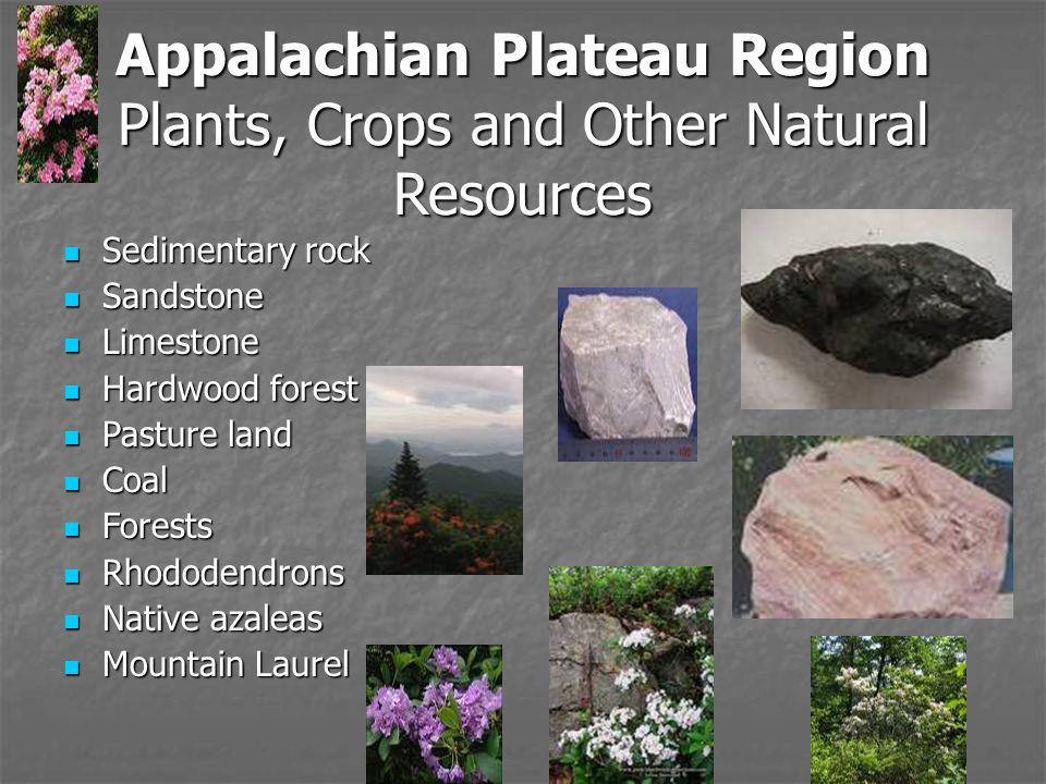 Georgia Appalachian Plateau Natural Resources