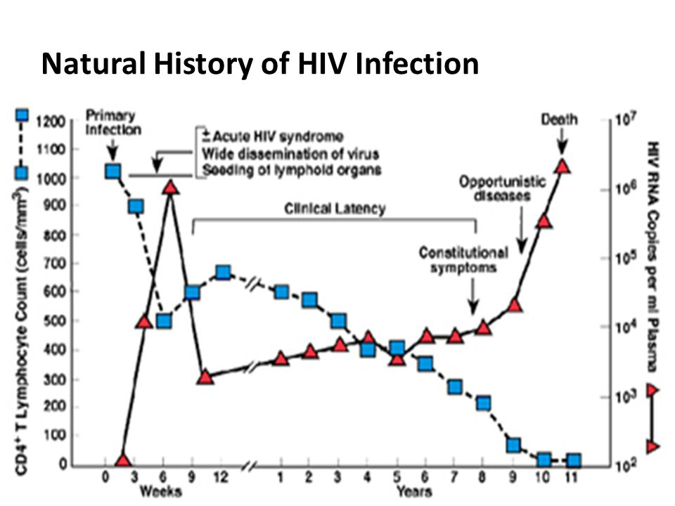 Hiv Viral Load Natural History