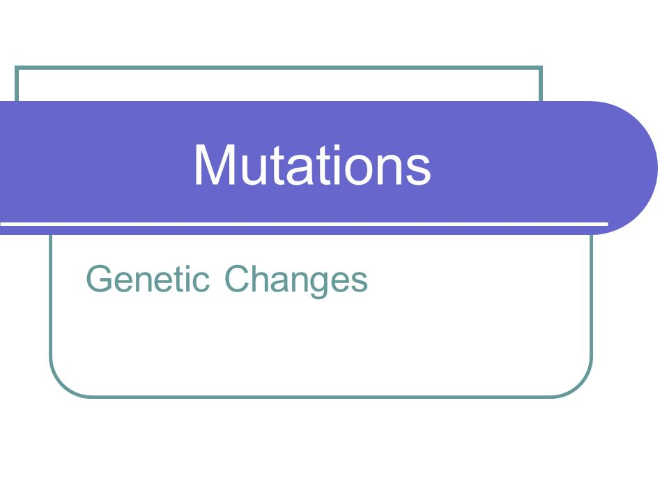 Mutations Genetic Changes