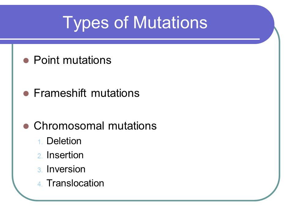Types of Mutations Point mutations Frameshift mutations