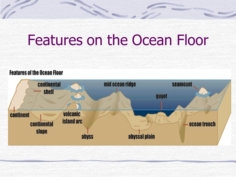 The ocean floor has many features ppt video online download for Ocean floor description