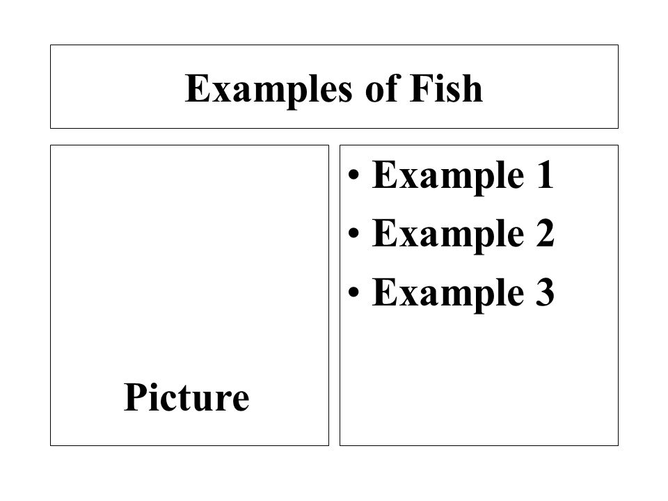 Animal groups your name ppt download for Examples of fish