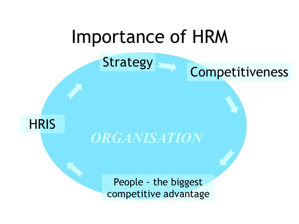 The HRM Function and its Role in Organizational Processes