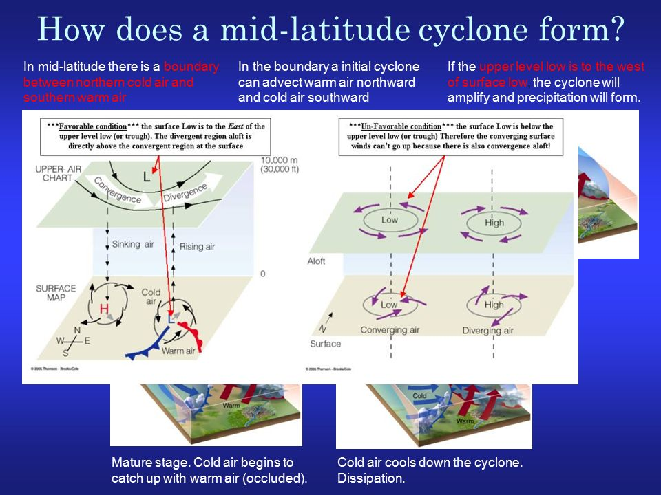 mid latitude cyclone formation Describe the initial stage in the formation of a mid-latitude cyclone 20 mid-latitude cyclones are sometimes called wave cyclones why do you think this is so.