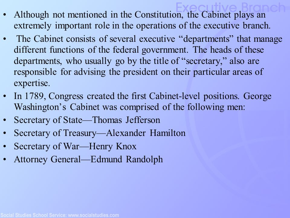 The Executive Branch (Established 1788) - ppt download
