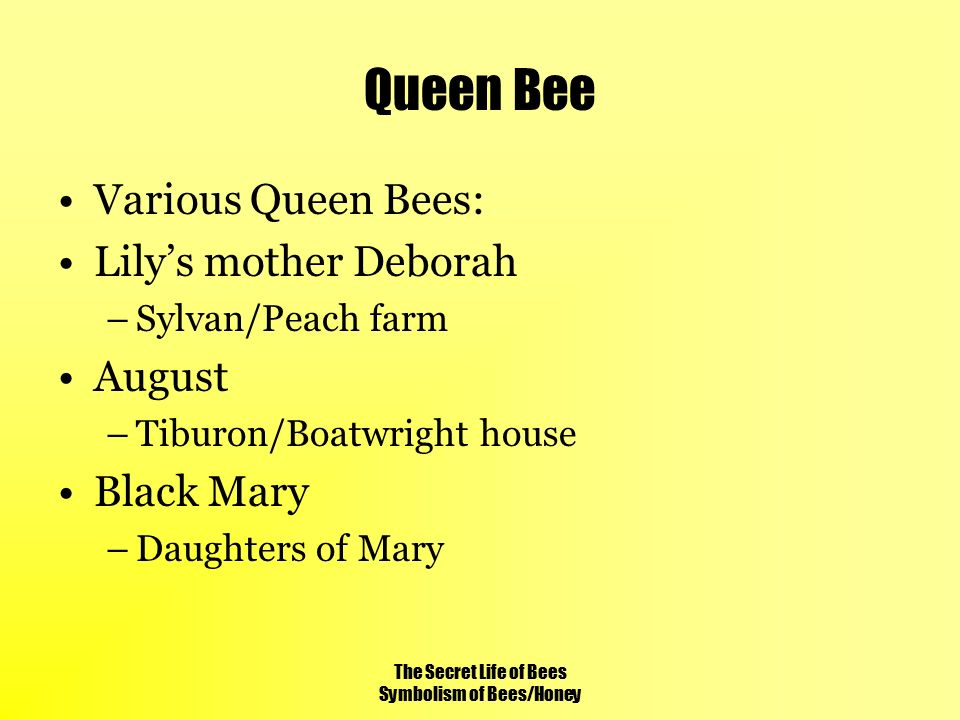 Quotes In The Secret Life Of Bees Simple The Secret Life Of Bees Symbolism Of Beeshoney  Ppt Video Online