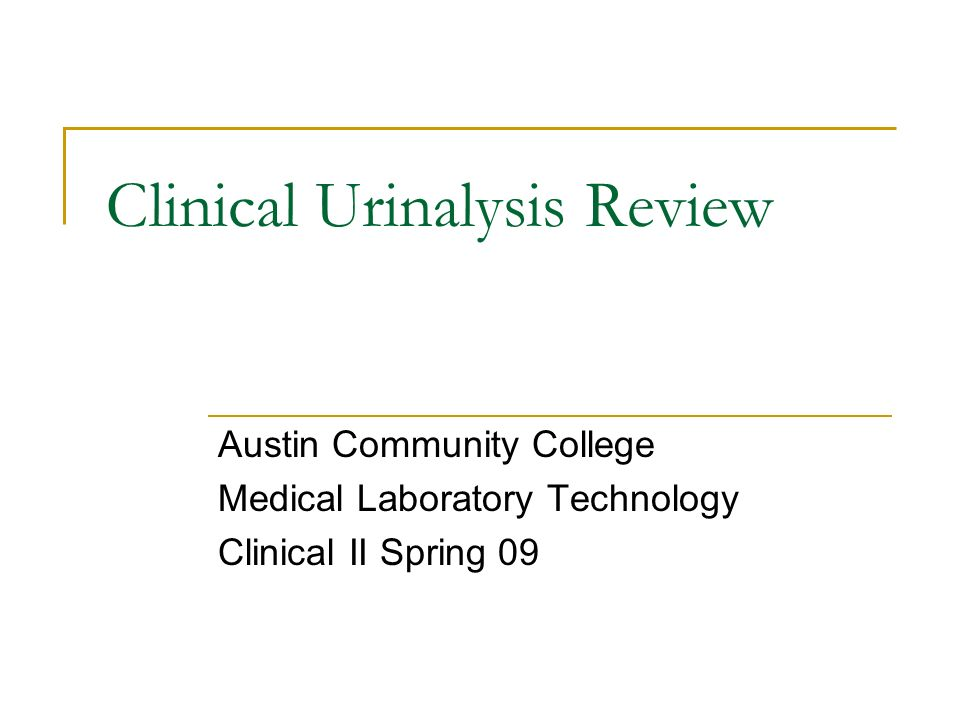 Clinical Urinalysis Review - ppt video online download