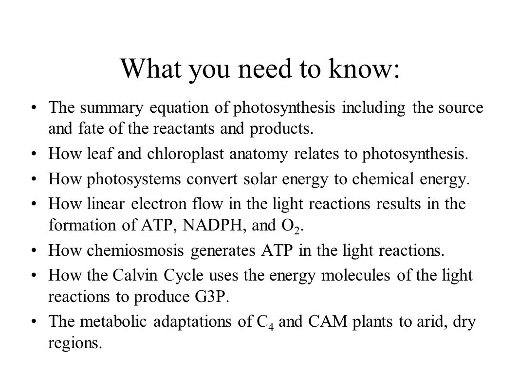 What are the products of photosynthesis and respiration - 2 What