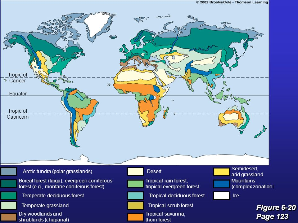 biogeography climate biomes and terrestrial