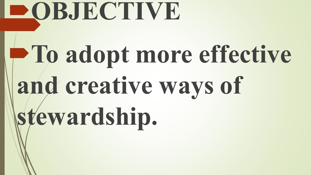 OBJECTIVE To adopt more effective and creative ways of stewardship.