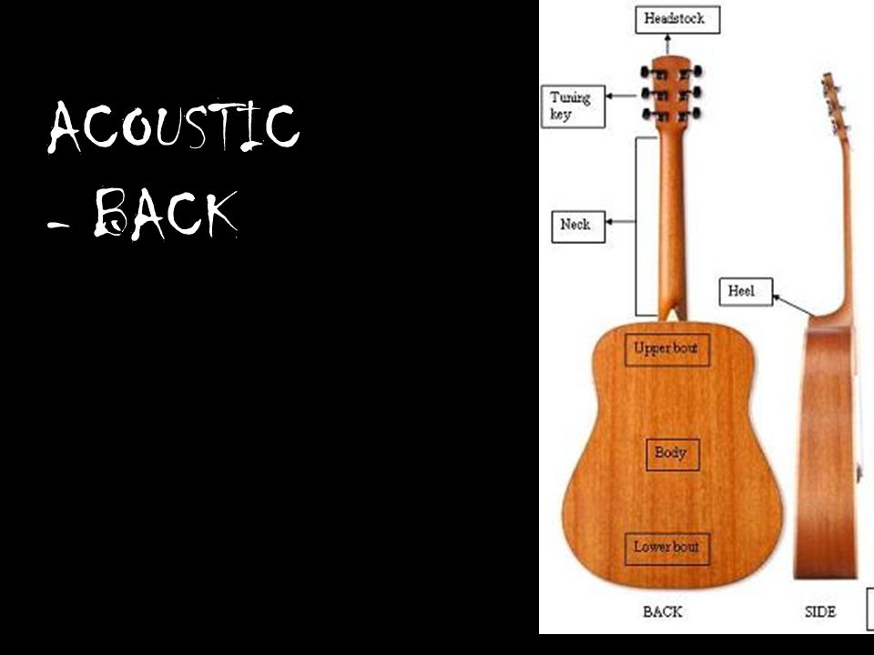 Guitar anatomy acoustic