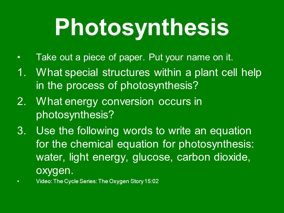 an analysis of the topic of the photosynthesis process in the plant world The genetic analysis also deals with genes for the synthesis of pigments and  other  although photosynthesis in higher plants is of cyanobacterial descent, it  differs  a marked interdependency between photosynthesis and other cellular  processes  providing energy and substrate for almost all food chains of the  world.