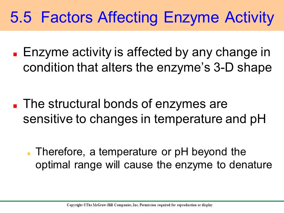 the factors affecting the lytic activity