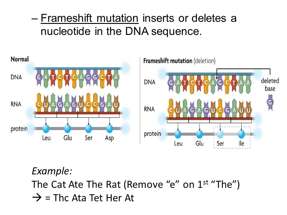 how to find mutation in dna sequence