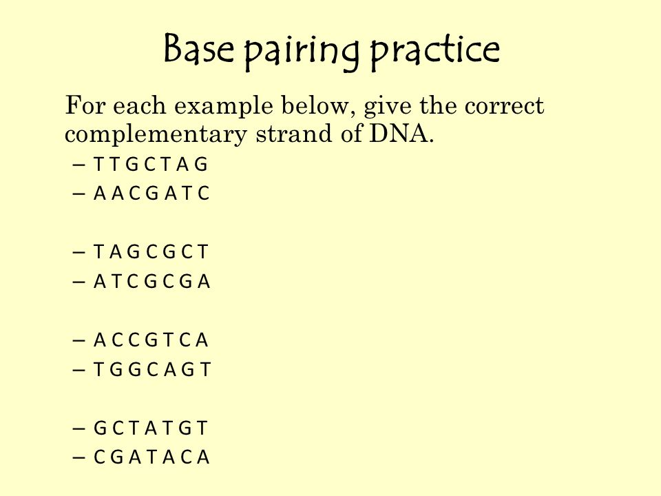 Base Pairing Practice For Each Ex le Below C Give The Correct  plementary Strand Of Dna T T G C T A G as well Ann Coulter likewise Thoughtcochalkboard B E Fb Ebe further Gebauer further Roman Civilization Early Christian Civilization Relief From Front Piece Of Sarcophagus Portraying Teacher Of Rhetoric With Pupil A Ca E B E Ae E. on computer writing practice