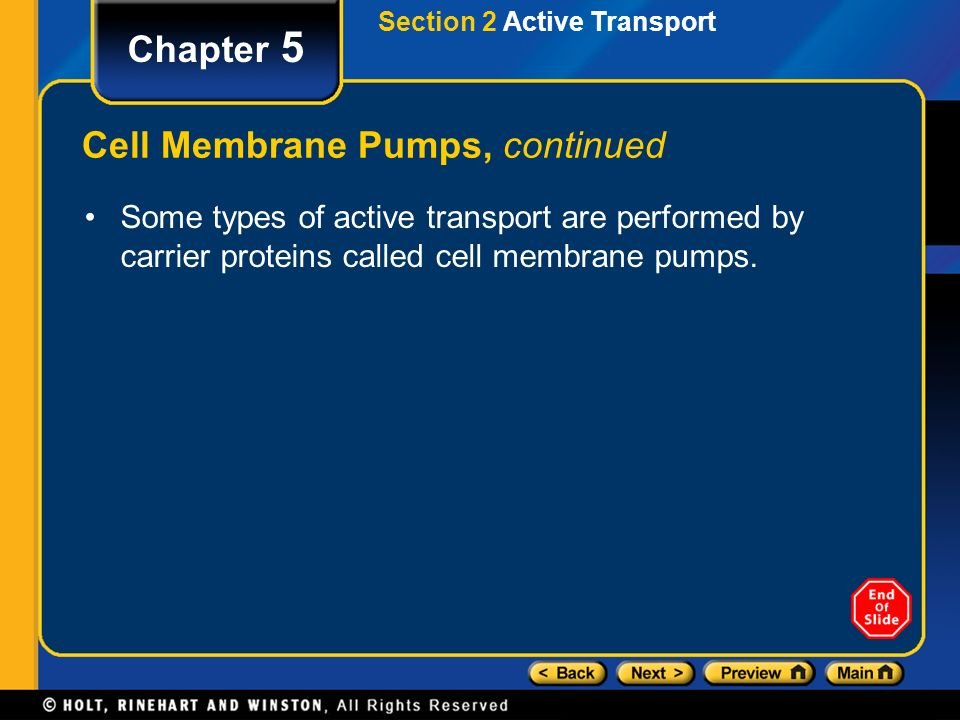 Cell Membrane Pumps, continued