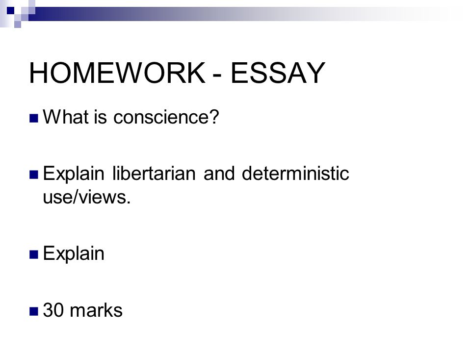 Conscience To Understand The Relationship Between Conscience And  Homework  Essay What Is Conscience