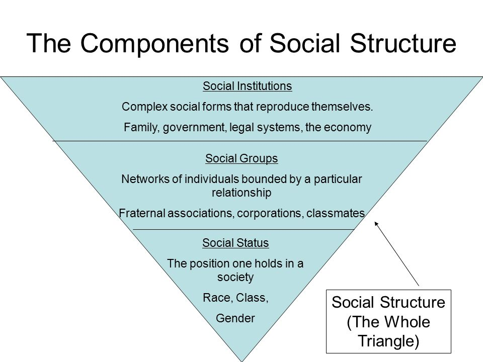 an understanding of the social systems He defined a social system as only a this occurs because there is either an incomplete understanding or a misunderstanding of the causes of an issue on the.