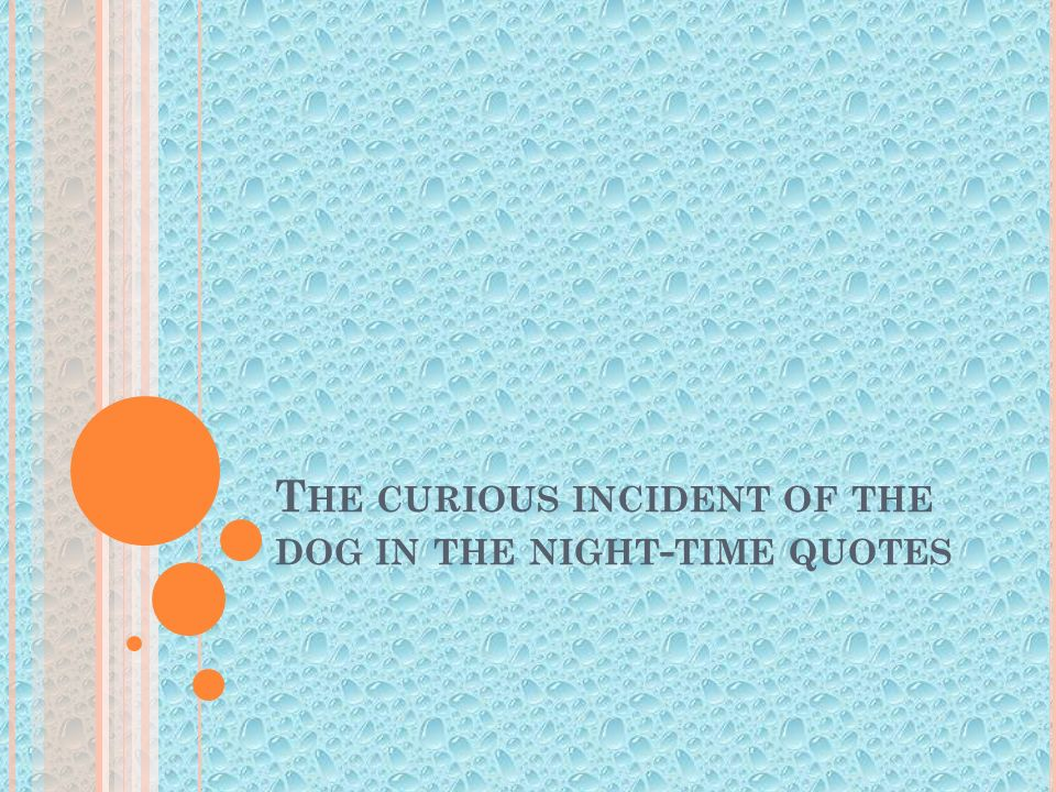 quotes on curious incident of dog The curious incident of the dog in the night-time by mark haddon 1 on pages 45–48, christopher describes his behavioral problems and the effect they had on his .