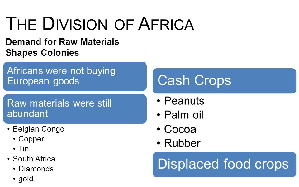 The Division of Africa Cash Crops Displaced food crops Peanuts