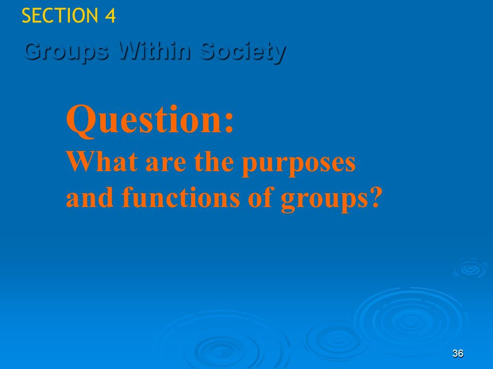 Question: What are the purposes and functions of groups