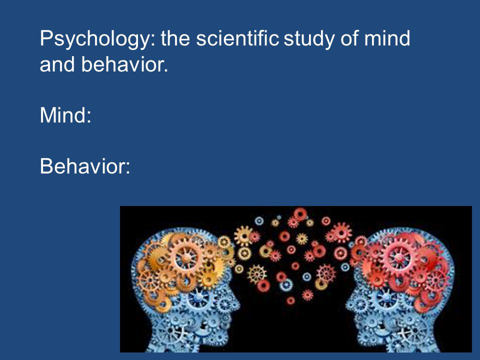 the study of the mind Course description psychology - the study of the mind, the brain, and behavior - is relevant to every aspect of your life how does personality form how does.