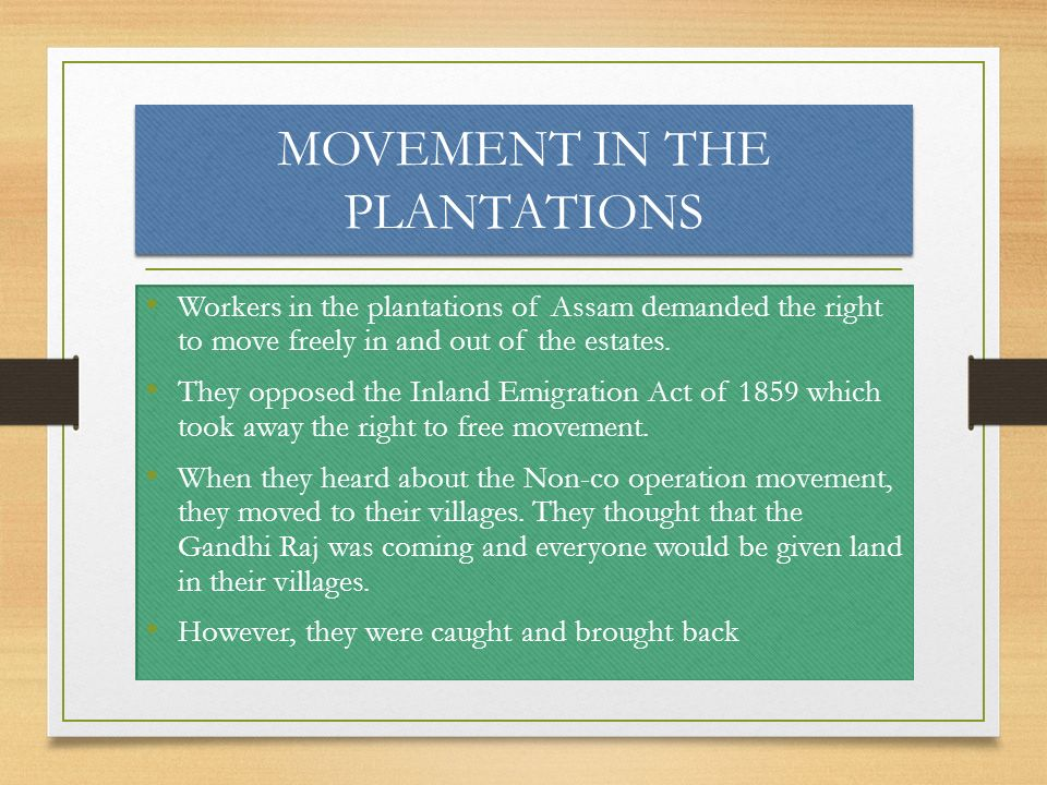 MOVEMENT IN THE PLANTATIONS