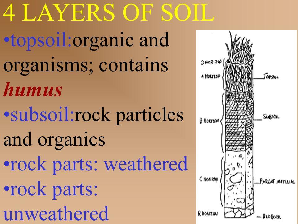 Big idea abiotic biotic factors influence the for What soil contains