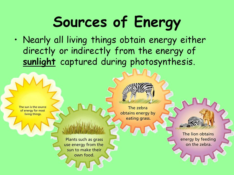 Photosynthesis. - ppt video online download
