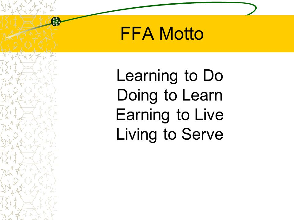 Learning to Do Doing to Learn Earning to Live Living to Serve