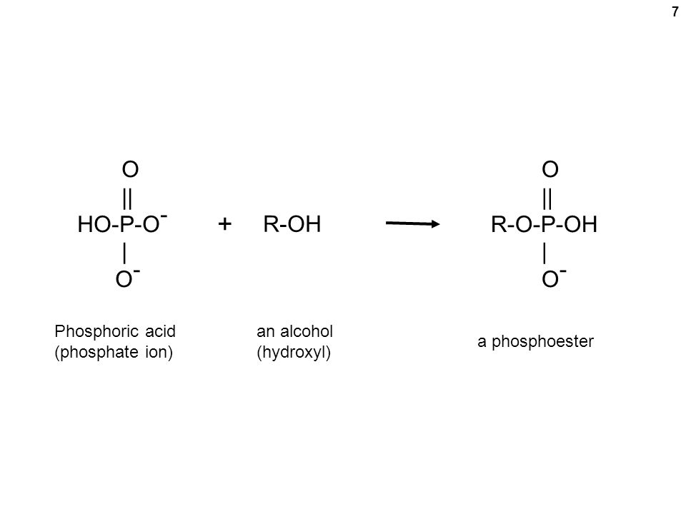 What is Phosphoric Acid  Structure Uses amp Formula