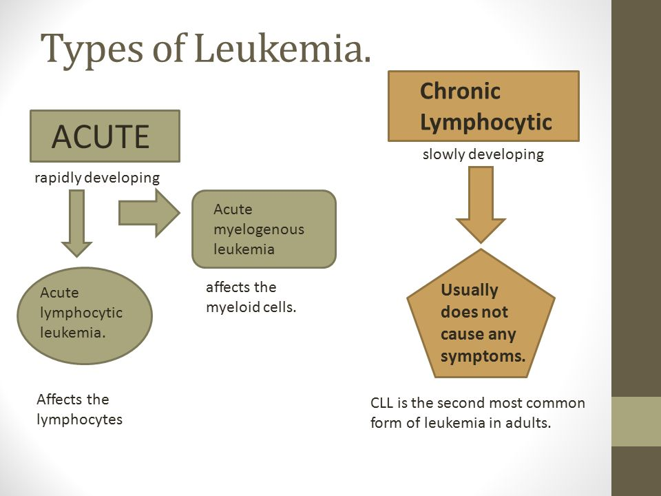 informative speech on leukemia Leukemia is a broad term for cancers of the blood cells the type of leukemia depends on the type of blood cell that becomes cancer and whether it grows quickly or slowly the information in this section is meant to help you cope with the many issues and concerns that occur when you have cancer.