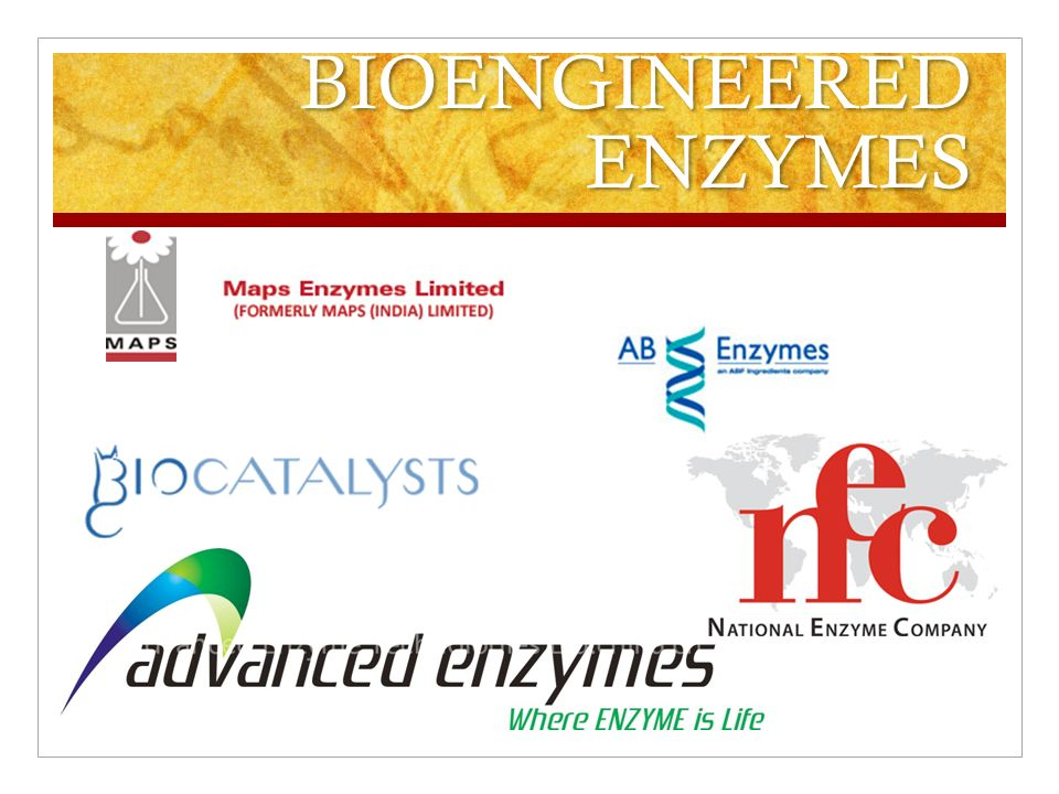 application of enzymes Development of restriction enzymes and gene innovative applications of these enzymes will take reases' role beyond molecular cloning by continuing to.