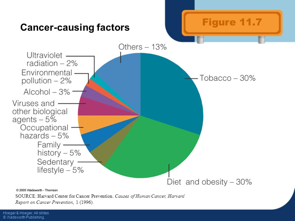 dietary guidelines for cancer prevention include